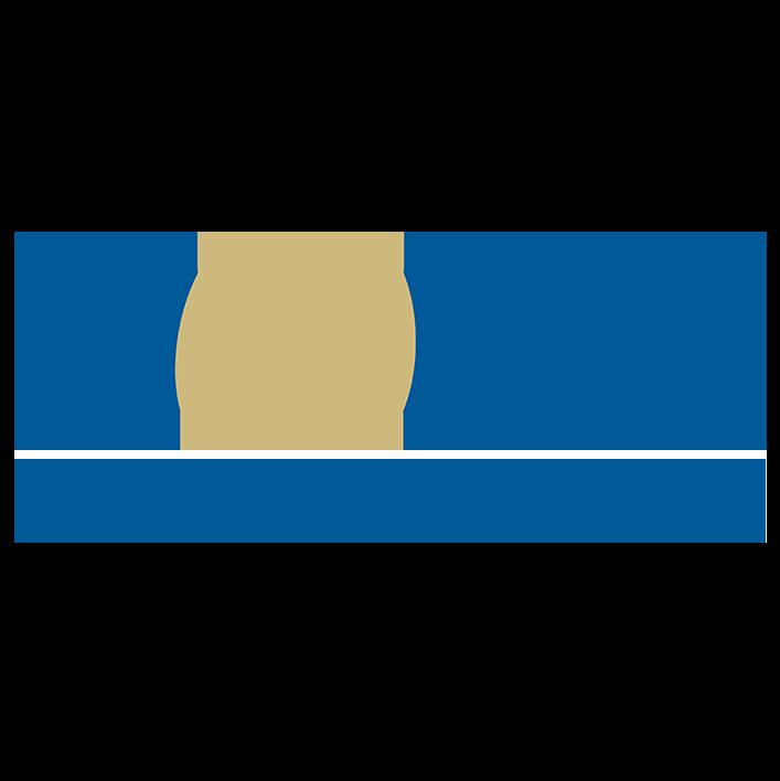 WCC online Safety Seminar