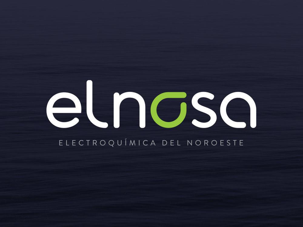 Electrochίmica del Noroeste S.A. (ELNOSA)